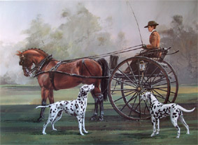 Horse and buggy with Dalmatians
