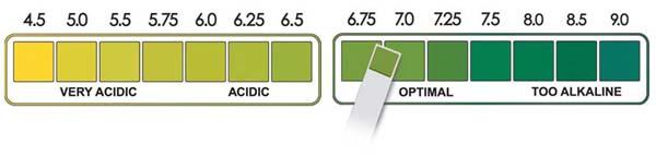 PH test scale