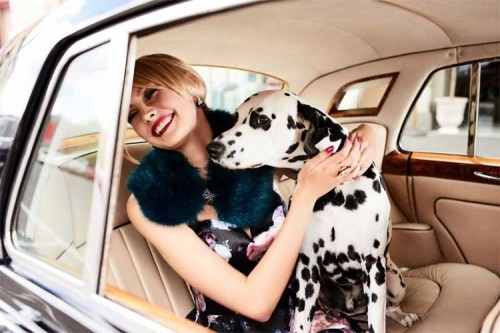 Review Australia L'Hôtel Campaign- Model RUBISS Aust Ch Dimadal Journey To The Stars